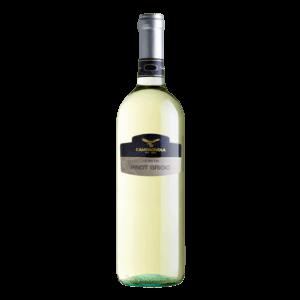 Pinot-Grigio-Veneto-IGT-Veneto-Pinot-Grigio-product