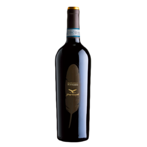 Ripasso-Valpolicella-DOC-Classico-Superiore-Veneto-Corvinone-Veronese-Rondinella-product