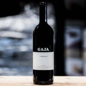 gaja rødvin fra piemonte
